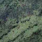 Тропикал Грин (Tropical Green) Гранит